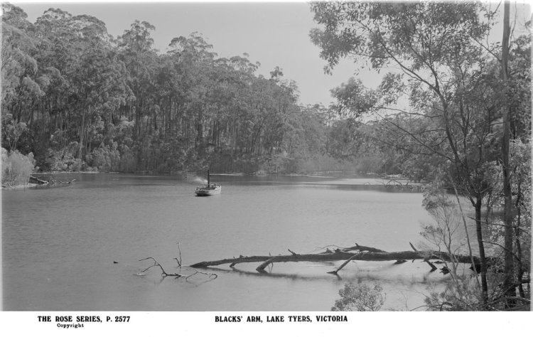 SLVic_Lake Tyers_0_427438